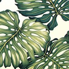 tropical print curtain fabric exceptional upholstery hawaiian monstera green leaf