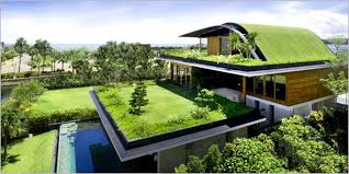 How To Build A Green Home Amazing Ideas.