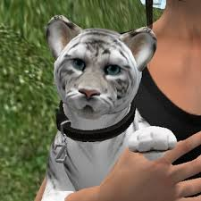 baby white tiger. Delighful Tiger Zooby Pettable Baby White Tiger For Men BOXED And H