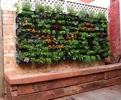 Small Picture Small Garden Wall Ideas CoriMatt Garden