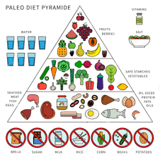 Is It Paleo Chart What Is Paleo Diet Learn Paleo Diet Chart In India