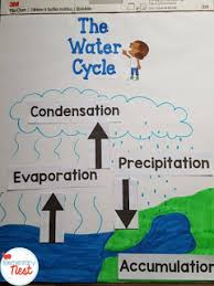 Teaching Water Cycle Activities Resources And A Freebie