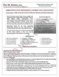 Executive Resume Sample Executive Vice President Executive Resume
