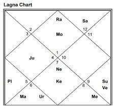 Dasamsa Chart Analysis Guide Astrofuture Photography Profession D 10 Dasamsa Chart
