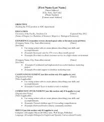 First Job Resume Examples High School Student Resumes For Jobs Template Breathtaking Resume 82