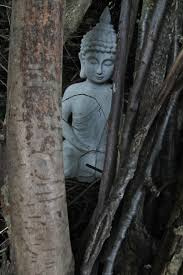 sacred tarot archive rohit arya s essay on the buddha austerities