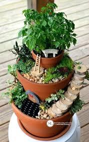 plants for fairy gardens fairy garden plants flower pot fairy garden fairy garden plants home depot fairy garden plants