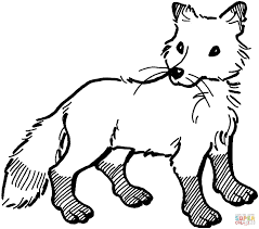 Animal Jam Arctic Fox Coloring Pages Printable Educations For Kids