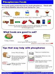Low Phosphorus Foods Chart Order Your Copy Of Phosphorus