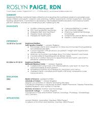 Big Four Resume Sample resume Audit Associate Resume 9