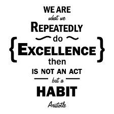 Aristotle Excellence Quote Stunning Excellence Is A Habit Wall Quotes™ Decal WallQuotes