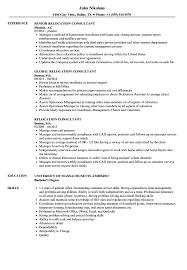 Relocation Resume Sample Relocation Consultant Resume Samples Velvet Jobs 14
