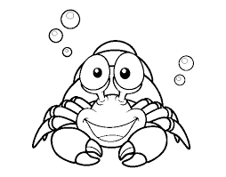 Small Picture Hermit crustacean coloring page Coloringcrewcom