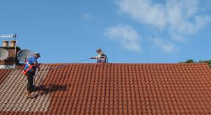 painting roof tiles pictures