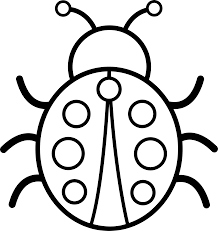 Small Picture Ladybug Coloring Pages 37771ded408ae8f2461433c8989be979gif