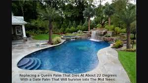 Pool Landscape Design Palm Tree Landscaping Design Houston Texas Pool Landscape Youtube