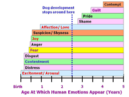 Animal Iq Chart Which Emotions Do Dogs Actually Experience Psychology Today