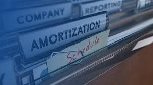 Vehicle Amortization Chart Lease Liability Amortization Schedule How To Create It In