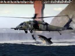 great white shark jumping at a helicopter during training. Exellent Great Great White Shark Jumping At A Helicopter During Training With Great White Shark Jumping At A Helicopter During Training O