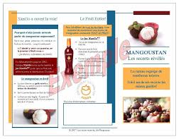 Sample Business Brochure Images Of Company Brochure Design Samples Free Sampl On Notable 3