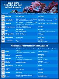 Reef Tank Parameters Saltwater Aquarium Fish Reef