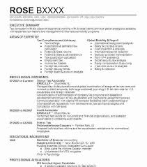 Best Resume Format For Experienced Professionals Resume Template For