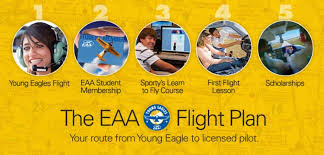 Image result for young eagles