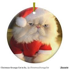 grumpy cat christmas hat. Plain Grumpy Christmas Grumpy Cat In Santa Hat On H