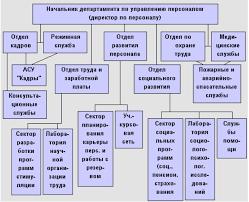 Автоматизация процесса управления персоналом на примере ООО  Рисунок 1 1 Структура департамента по управлению персоналом в инновационных структурах