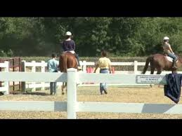 Dream Catchers Therapeutic Riding Center Magnificent Horses Dream Catcher