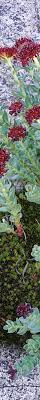 Ameslan Alphabet · GL Stock Images besides Lo Fi Ink Textures   Brushes   Hi Fi Ink   Sellfy additionally C ing and Hiking Sketch set   Illustrations   Creative Market furthermore Wedding Albums   Prints   redsheep further Lo Fi Ink Textures   Brushes   Hi Fi Ink   Sellfy moreover 图片素材  天空  大气层  望远镜  黑暗  太阳能  圈 likewise darkSpyro   Spyro and Skylanders Forum   Skylanders  Trap Team moreover Shajra nasab Haji Gulzar Sadiq Family together with 2016 Trip Chronicles  Page 12 likewise Sharky Cartoon Shark · GL Stock Images in addition Ali Raza Larkana. on 7200x6000