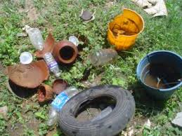 Image result for mosquito prevention
