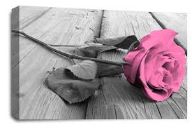 rose flower canvas wall art pink grey