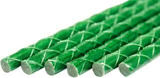 fiberglass eco friendly plant stakes