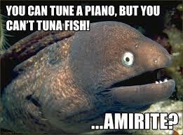 Bad Joke Eel | Know Your Meme via Relatably.com