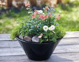 tabletop planter ideas garden gate