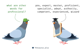 Professional Other Words More 700 Professional Synonyms Similar Words For Professional