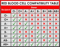 Blood Group Combination Chart What Are The Rarest Blood Types In The World Is Yours The