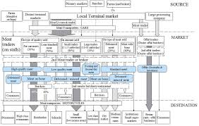 Meat Processing Flow Chart Mapping Of Beef Sheep And Goat Food Systems In Nairobi A