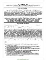 Cover Letter Excellent Finance Manager Resume Summary Executive Re