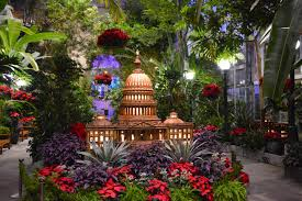 holiday show with poinsettias and u s capitol building made from plant parts