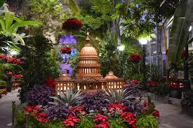 botanical art worldwide america s flora