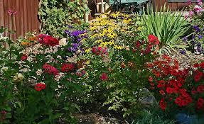 connecticut garden journal cutting