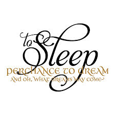 Quote To Sleep Perchance To Dream Best Of Hamlet Sleep And Dream Wall Quotes™ Decal WallQuotes
