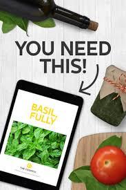 Fresh Basil To Dried Basil Conversion Chart Fresh V Dried Basil The Cookful