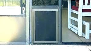 screen door with pet door screen door sliding screen door pet door pet door storm doors