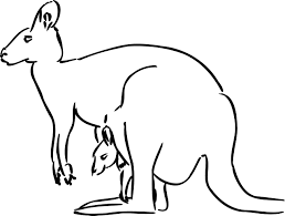 Small Picture Free Printable Kangaroo Coloring Pages For Kids Animal Place