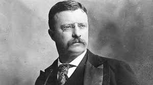 Teddy Roosevelt Quotes