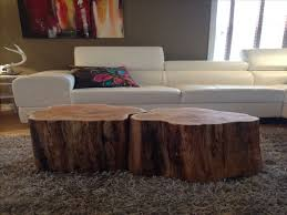Furniture: Tree Trunk Coffee Table Fresh 25 Best Ideas About Tree Trunks On  Pinterest Tree