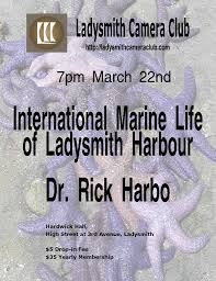 ladysmith camera club a great place to learn explore photography ladysmith camera club is delighted to present international marine life of ladysmith harbour a photo essay by dr rick harbo noted marine biologist